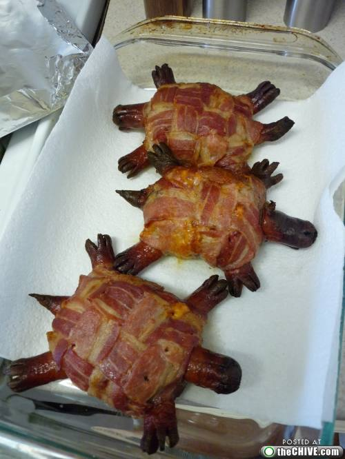 Bacon Coffins Bacon Turtles Bacon Crusts The World S