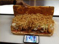 Fatso burger challenge