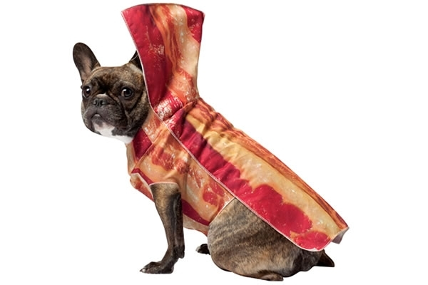 Bacon-Dog-Costume