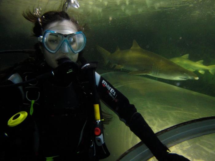 Sasha Grey Sharks