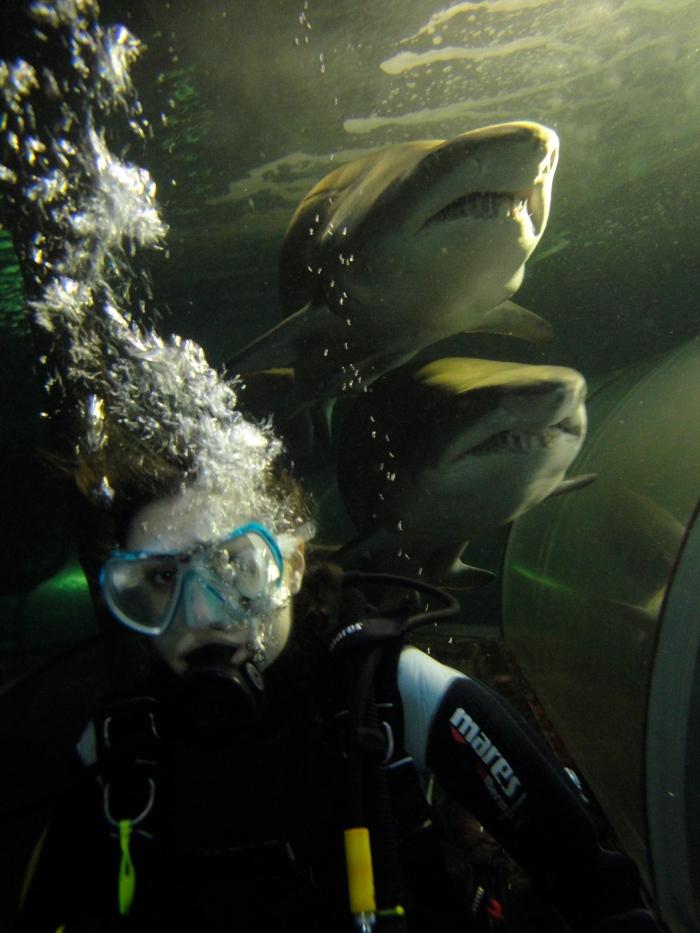 Sasha Grey Sharks Photo bomb