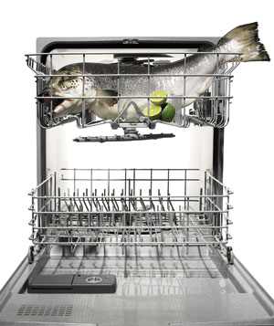dishwasher salmon