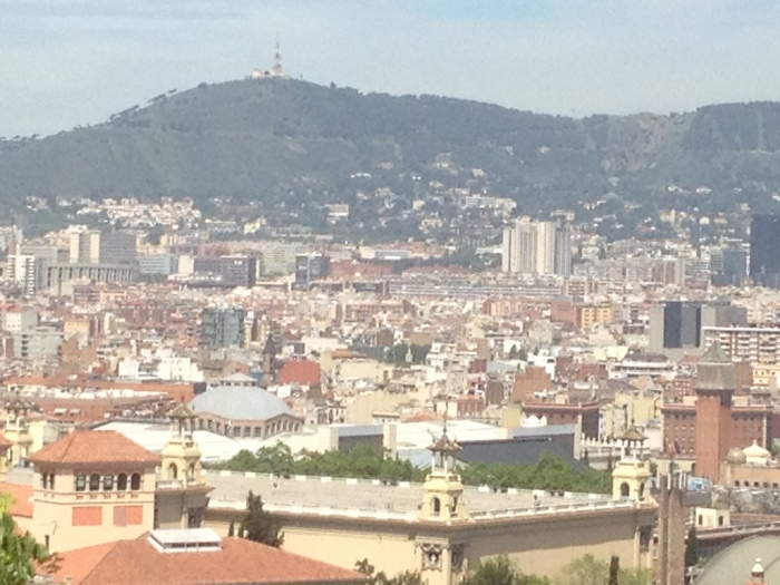 Barcelona from the park