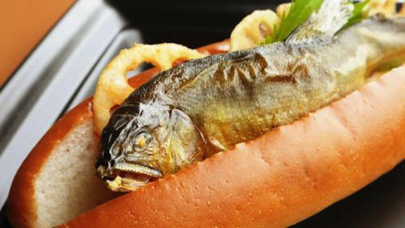 fish dog hot dog