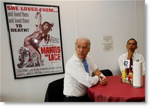 rays-hell-kitchen-biden-obama-mantis-and-lace-poster-2009