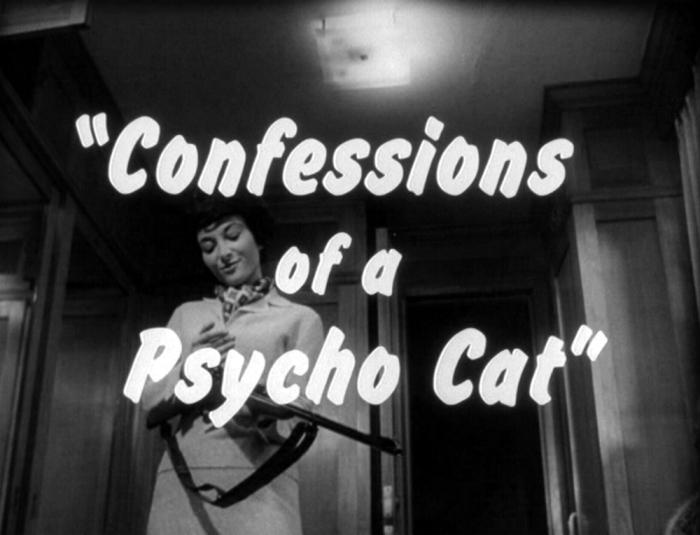 Confessions+of+a+Psycho+Cat
