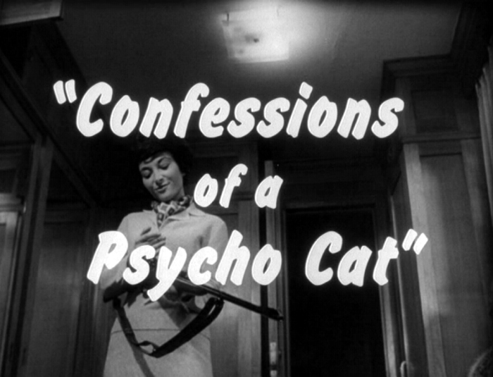 Confessions+of+a+Psycho+Cat