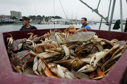 crab_fisherman