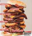 world's biggest burger
