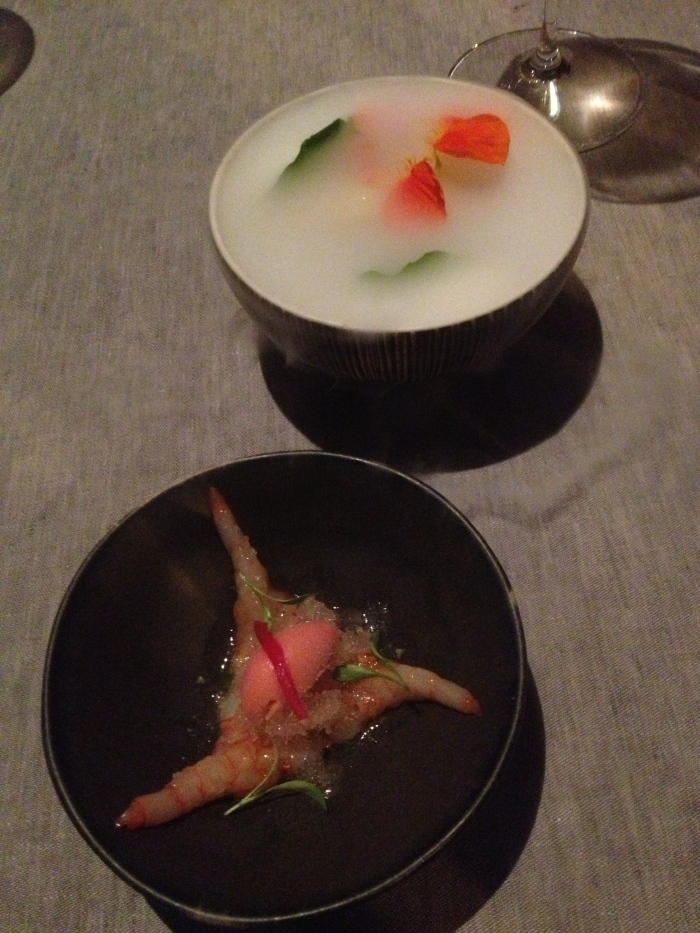 Comerc24 shrimp with sorbet