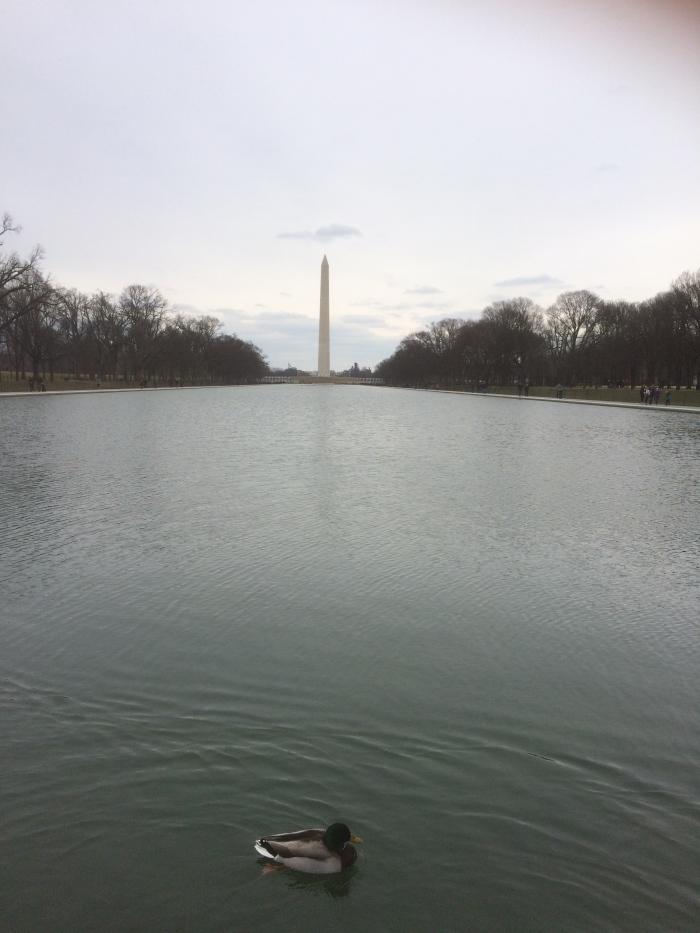 WAshington DC tourist sites