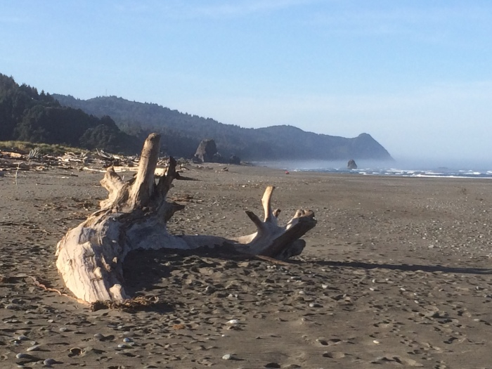 Oregon coast beach getaways