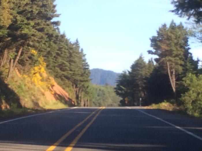 Oregon coast highway drive