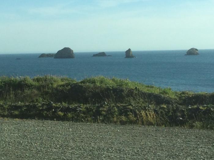 Oregon coast sights