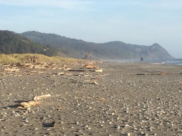 Oregon coastline beaches