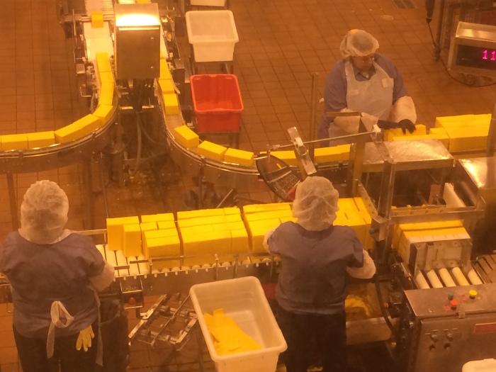 Oregon Tillamook cheese factory