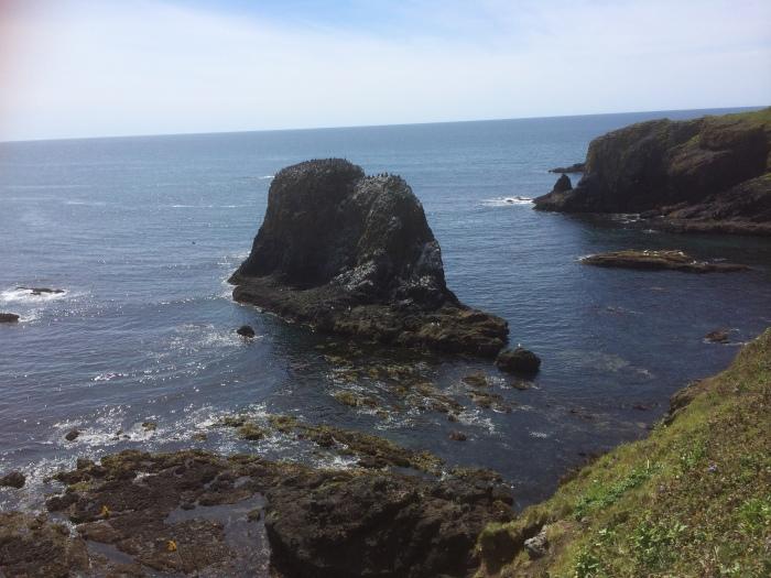 Yaquina head landscape Oregon