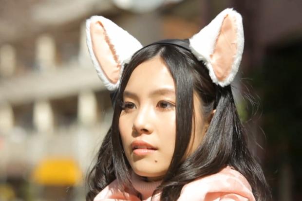 cat_ears