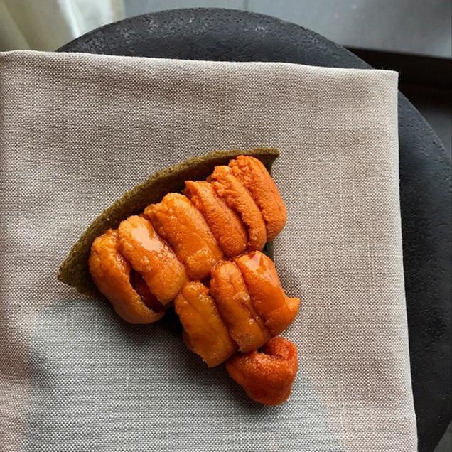 sea urchin pie