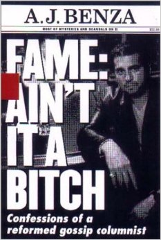 Fame Aint It A Bitch book