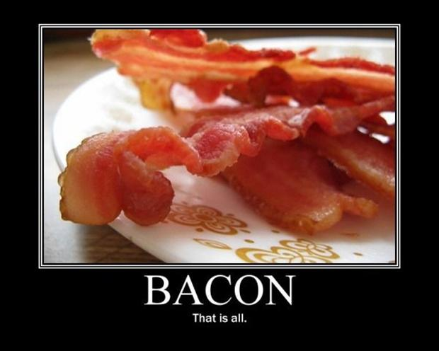 new bacon book