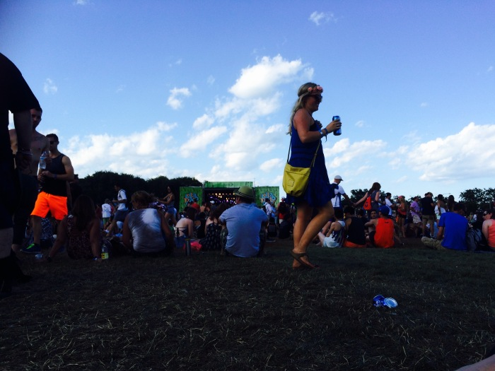 Lollapalooza crowd 2015