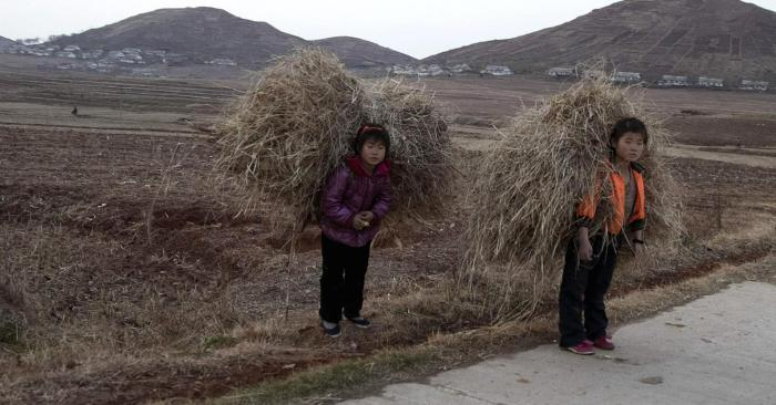 North Korea starving children