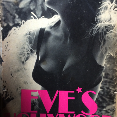 naked Eve Babitz profile