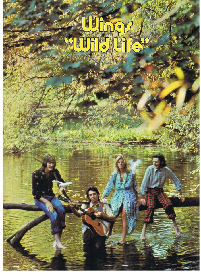 Wings wild life cover