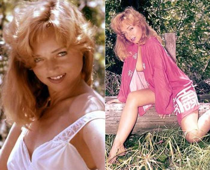 yvette vickers death in beverly hills