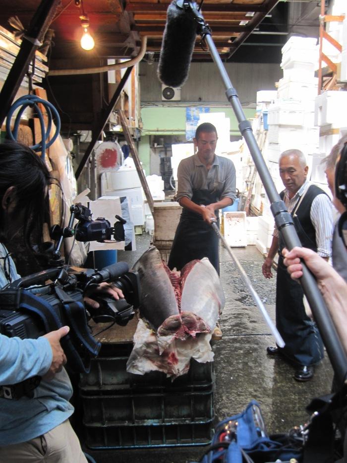 fish market tuna slices in half