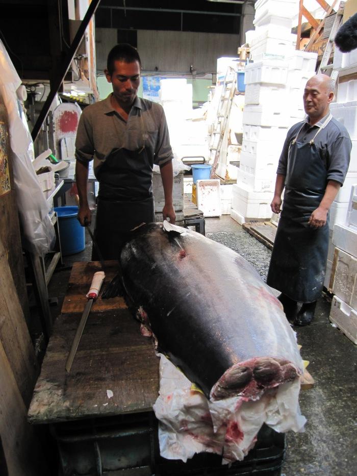 Tokyo fish market closing giant tuna