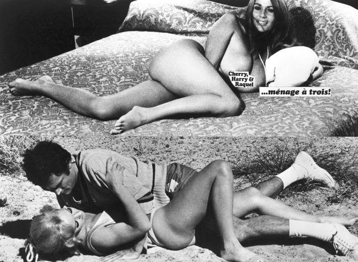 Cherry Harry & Raquel Uschi Digard nude films