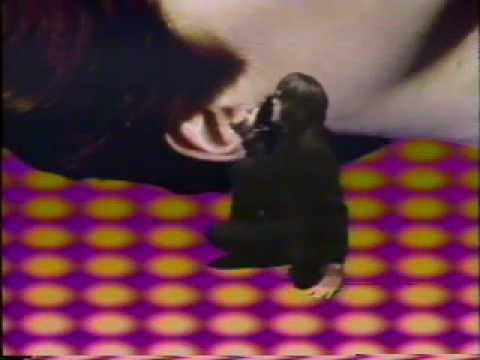 Todd Rundgren music video