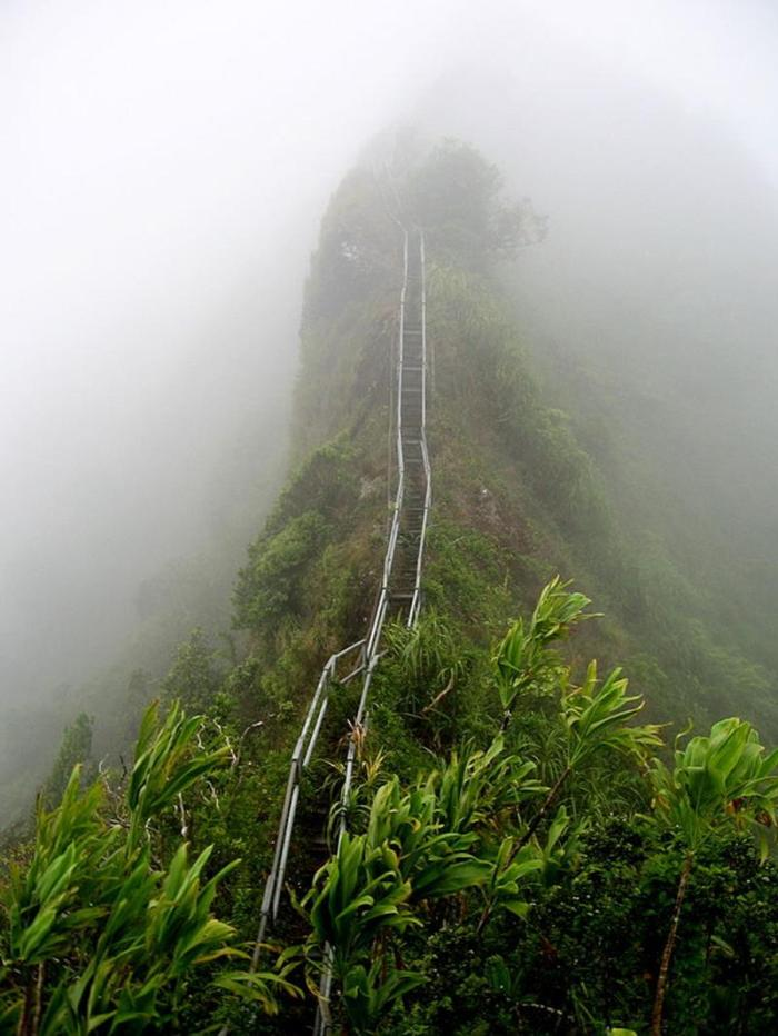Hawaii's-Most-Stunning-hiking trail