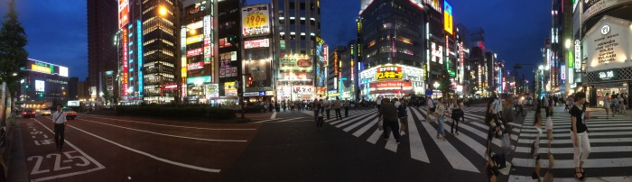 kabukicho panorama