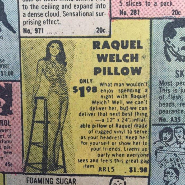 Raquel Welch pillow
