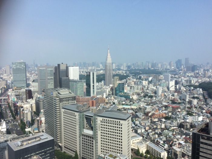 The view from the Park Hyatt