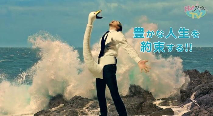 wacky-iphone-device-holder-swan