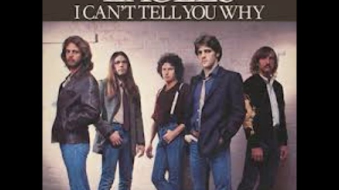 eagles-i-cant-tell-you-why