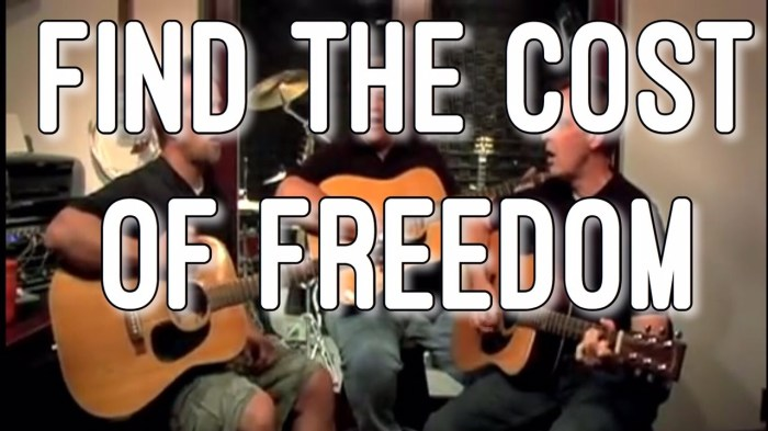 find-the-cost-of-freedom