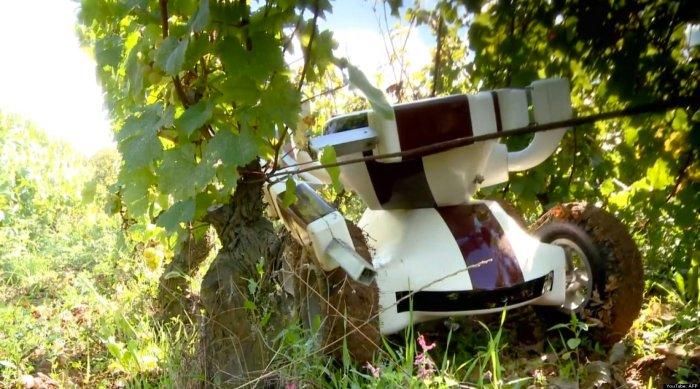 o-wallye-wine-robot-facebook