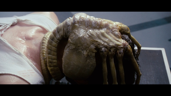 alien-face-hugger