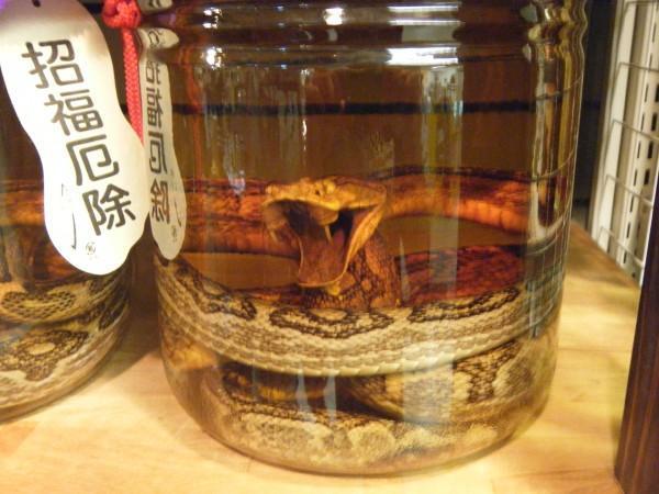 habu-sake-japanese-snake-wine-7