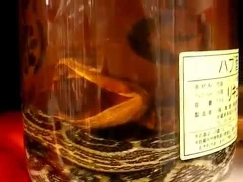 hubusan-snake-wine-from-japan
