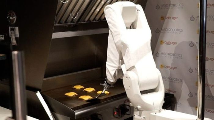 "A Cheeseburger-Making Robot! Meet ""Flippy"" The Chef! Fast"
