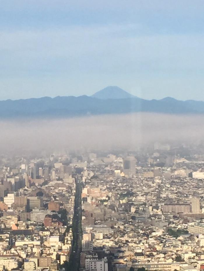 Mount Fuji from Tokyo Park Hyatt