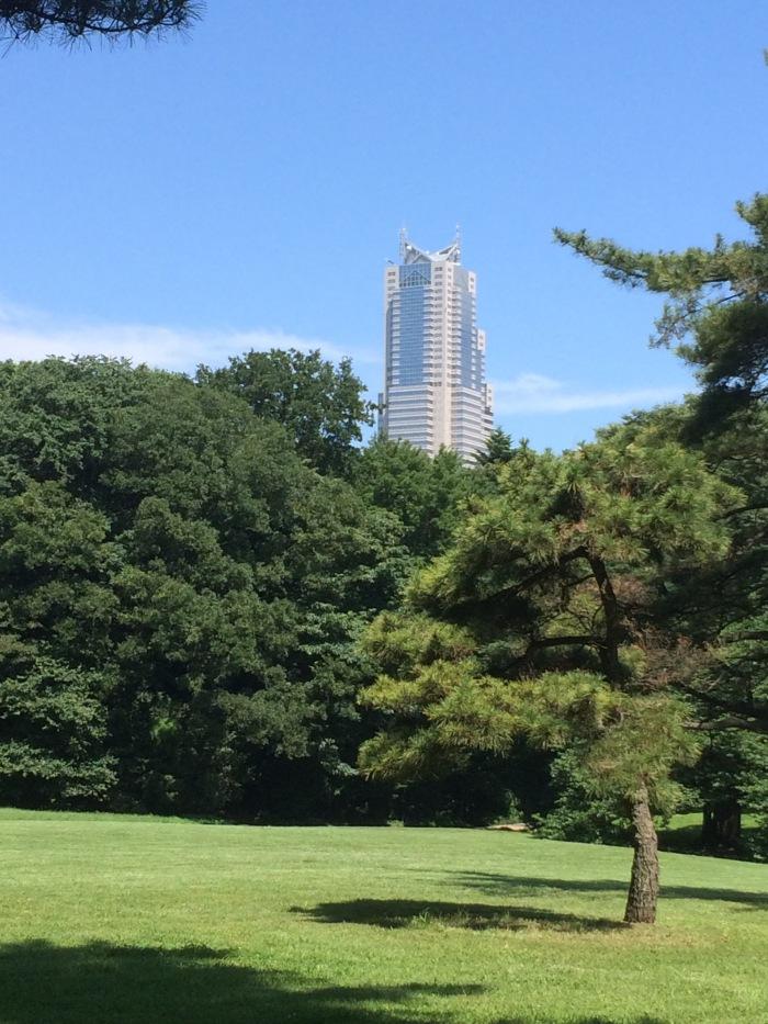 Park Hyatt from Tokyo park