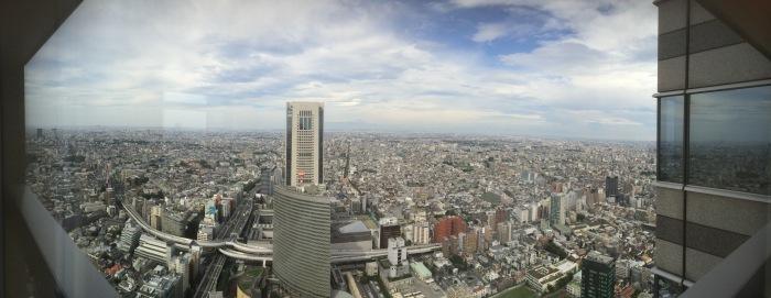 Tokyo hotel panorama