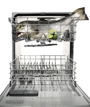 dishwasher salmon